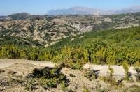 JV Albánie