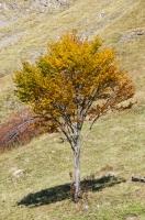 Podzim v horách