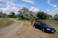 Herping near Dabas, Hungary