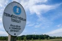 Dabasi Turjános Természetvédelmi terület