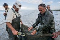Fishermen, Divjake-Karavasta NP