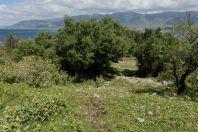 Orikum Archaeological Park