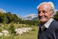Shepherd, Theth