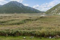 Lake of Small Prespa, Buzëliqen