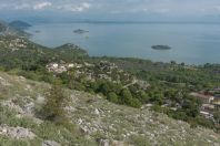 Donji Murići