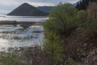 Virpazar, Skadar Lake
