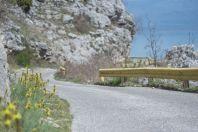 Road, Skadar Lake