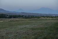 Ararat, Urtsadzor