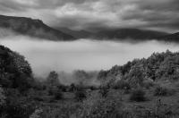 Fog, NP Sutjeska