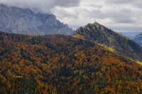 Perućica forest reserve, NP Sutjeska