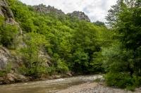 Pčinja river