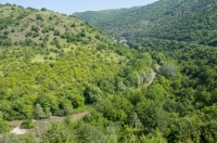 Údolí Pčinje