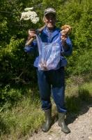 Mushroom picker, Nikolich