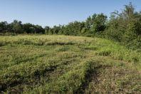 Habitat, Belo Polje