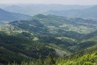 Jižní Srbsko