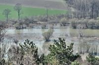 řeka Morava před soutokem s Dunajem