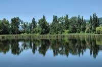 Šúrský rybník.