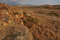 Near Damyanica