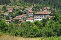 Brodilovo village