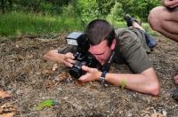 Photographing the Lacerta viridis, Brodilovo