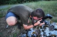 Fotografování Dolichophis caspius