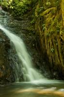 Catarata, Monteverde