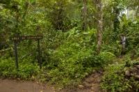 Refugio Nacional Gandoca-Manzanillo