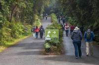 Nejnavštěvovanější park Kostariky - NP Volcano Poás