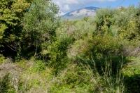 Habitat poblíž Chora Getson