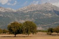 Feneos planina