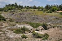 Locality of Testudo hermanni, Dadia
