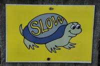 Pozor na želvy