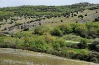 Near Lefkimi