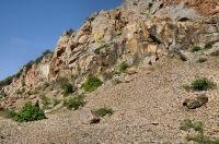 Habitat blízko Alexandropolis