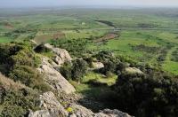 Krajina východně od Alexandropolis
