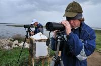Birdwatcheri