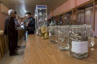 Sbírky, Přírodovědné muzeum, Erbil