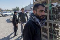 Sale of starlings, Erbil