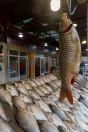 Prodej ryb, Dokan