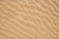 Traces, Negev