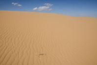 Shavit Sand dunes