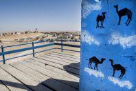Camel view, Mitzpe Ramon