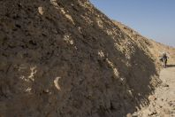 Ammonites wall, Makhtesh Ramon