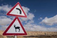 Antelope xing, Makhtesh Ramon