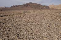 Arava valley