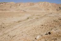 Makhteshim - Ein Yahav Reserve
