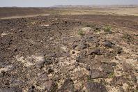 Lava desert, Yamin