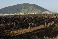 Mount Tabor, Galilee
