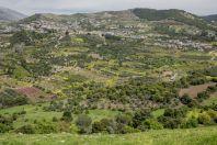 Ein Kinya, Golan