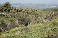 Nahal Sa´ar, Golan